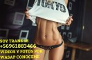 trans 18 soy experta en primerisos y heterocuriosos  +56961883466 wasap videos y fotos